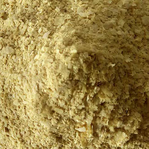 Nutritional Yeast High in Protein